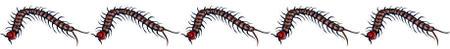 Centipede_5