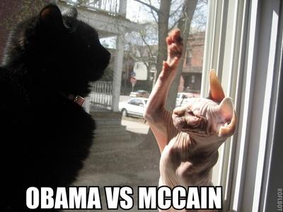 Obamavmccain